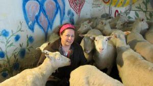 Lammastilaneuvoja Sari Heltelä lammaskatraansa keskellä.