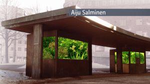 Aiju Salmisen ehdotus Hakaniemen torille.