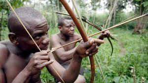 Pygmimiehiä jousineen.
