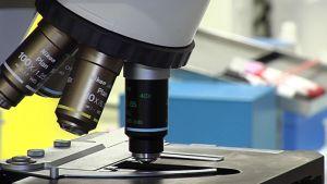 Mikroskooppi.