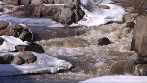 Vantaanjoki virtaa Vanhankaupunginkoskessa