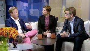 Nuorten EU-tulevaisuusryhmän jäsenet Robert Torvelainen, Milla Ovaska ja Matti Niemi.