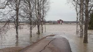 Vesi tulvii tielle Raussilassa Kouvolassa.