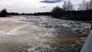 Jääpato Kiiminkijoessa Tirinkylän kohdalla