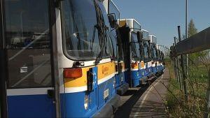 Veolian busseja rivissä varikolla.