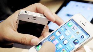Asiakas tutkii iPhone 5 -puhelinta kaupassa.