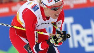 Kristin Steira.