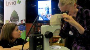 Ida Ronkanen katsoo mikroskoopilla. Essi Erävesi ammattiopisto Liviasta seuraa vieressä.