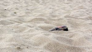 Olutpullo uimarannan hiekassa.
