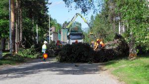 Puunkaatotyömaa Rovaniemen Karhunkaatajantiellä kesäkuun alussa.