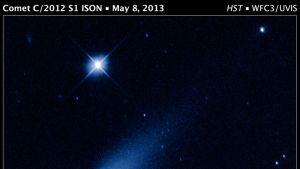 ISON-komeetta avaruusteleskooppi Hubblen ottamassa kuvassa.