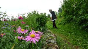 Martta Keränen puutarhassaan.