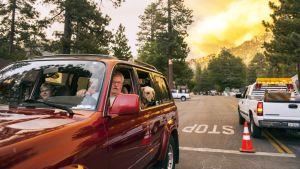 Idyllwildin kylä Kaliforniassa evakuoitiin maastopalojen alta 17. heinäkuuta.
