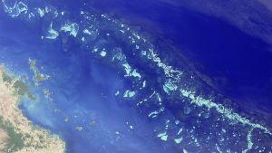 Osa Suuren valliriutan pohjoisosasta Nasan satelliittikuvassa elokuussa 2000.