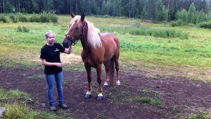 Tyttö ja hevonen laitumella
