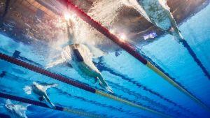 Kuva veden alta uimarien osuessa veteen.