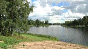 Reisjärven maisemaa Susisaaren rannalla 2013.