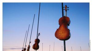 Teos jättikokoisista viuluista.