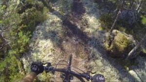 Maastopyöräilijä ajaa sammaleisella polulla.