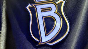 Bluesin logo.