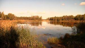 Pukinjärvi