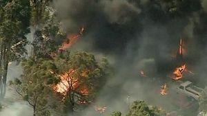 Metsäpalo ja sen saartamia taloja ja autoja.