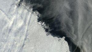 Suoraan ylhäältä, NASAn satelliitista otetussa kuvassa näkyy merijään ja sulan veden kiemurainen raja.