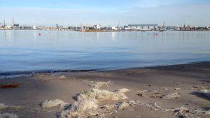 Valkoinen lasikuitusilppu peittää Helsingin Pihlajasaaren uimarantaa.