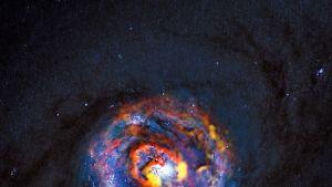 Kuva mustaa aukkoa ympäröivästä kaasusta, jonka keskiosassa on monenkirjavaa väriä.
