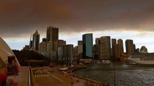 Maastopaloista peräisin olevat savu ja tuhka varjostavat Sydneyn kaupunkia.
