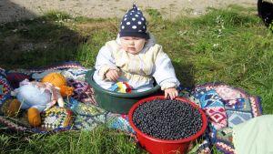Vauva syö mustikoita saavista.