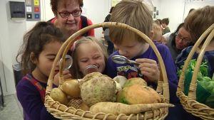 Kuvassa lapsia suurennuslasin kanssa vihanneskorien ääressä