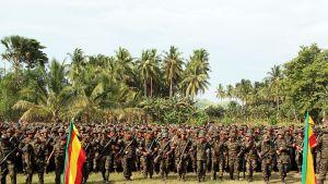 MILFin sotilaita valokuvattuna lokakuussa 2012.