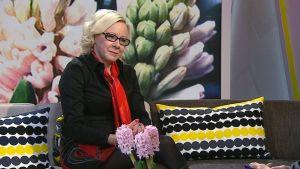 Allergianeuvoja Anne Vuorenmaa.