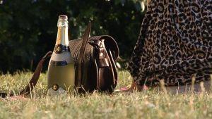 Nainen, käsilaukku ja kuohuviinipullo nurmikolla.