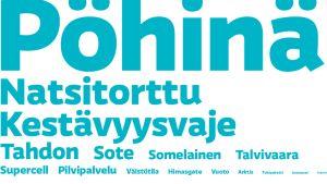 Ylen lukijat: Pöhinä on vuoden 2013 sana.