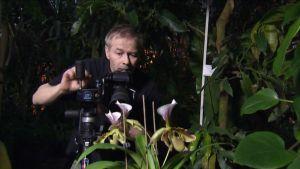 Orkideakuvaaja Janne Aho kuvaa.