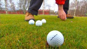 Golfpalloja viheriöllä.
