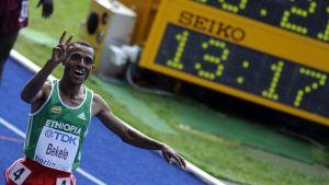 Etiopian Kenenisa Bekele tuuletaa tullessaan maaliin.