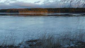 Uutta jäätä Puurvedellä.