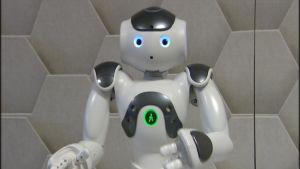 Valko-harmaa Nao robotti seisoo kahdella jalalla ja viittilöi käsillään