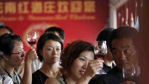 Matkailijat tarkastelevat viinin väriä lasissa.