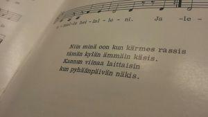 Lauluissa murre elää vielä, vaikka puheessa välillä unohtuukin.