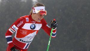 Astrid Jacobsen kuvassa