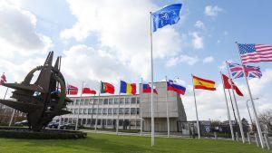 Naton päämaja Brysselissä.