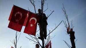 puuhun kiivenneet miehet ripustavat Turkin lippuja