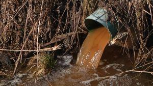 Salaojien vedet laskevat Alajoen peltoja halkoviin valtaojiin.