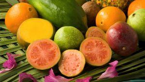 Guava hedelmiä.