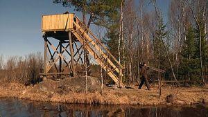 Laukaan Hohon Lapinjärven lintutorni.