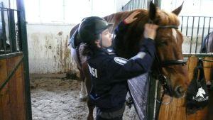 Ratsupoliisi ja hevonen